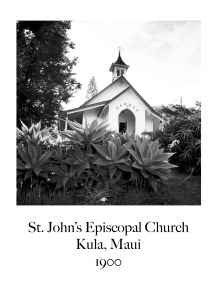 St. Johns Maui copy